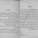 Jonat ki Wapsi by Ishtiaq Ahmed Download PDF