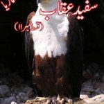Amber Naag Maria Series Part 11 (Safaid Aqaab) by A Hameed