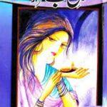Dil E Beqarar by Nighat Abdullah