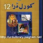 Corel Draw 12 In Urdu PDF by Saleem Saithy