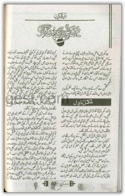 Teri wapsi bhi hoi agar by Anila Kiran PDF