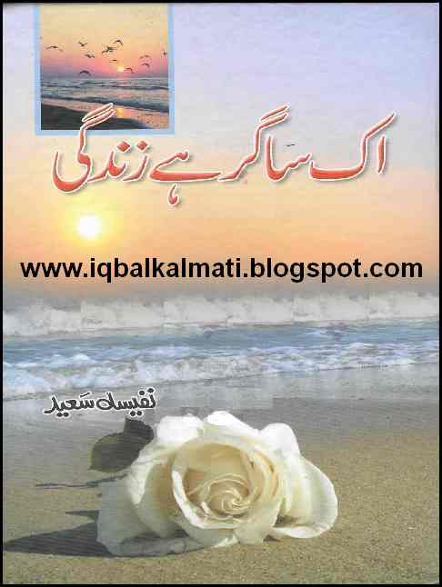 Image result for Ek Sagar Hai Zindagi by Nafeesa Saeed Download PDF