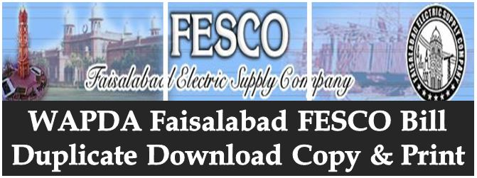 Image result for How to Check FESCO Duplicate Bill Online