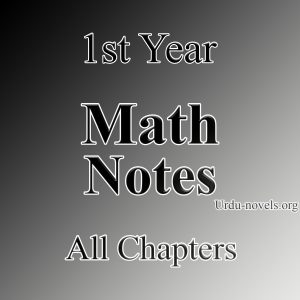 1st year math