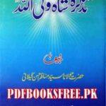 Tazkira Hazrat Shah Waliullah by Allama Manazir Ahsan Gilani Download PDF